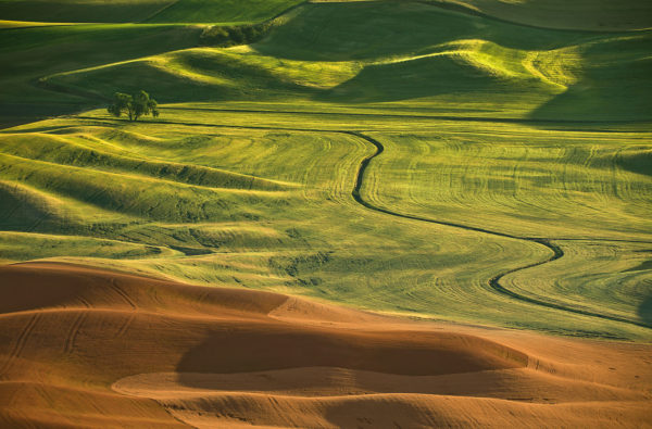Why The Palouse Is A Great Place To Do Business